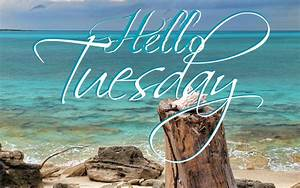 Hello Tuesday Pictures, Photos, and Images for Facebook ...  Tuesday