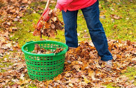 Garten Im Herbst Pflegen by Wie Pflege Ich Mein Rasen Im Herbst Nemann Home Garten