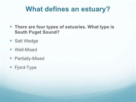 coasts estuaries  issues