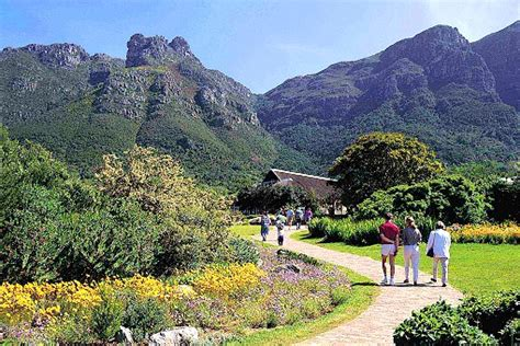 Botanischer Garten Kapstadt kirstenbosch botanischer garten kapstadt in s 252 dafrika