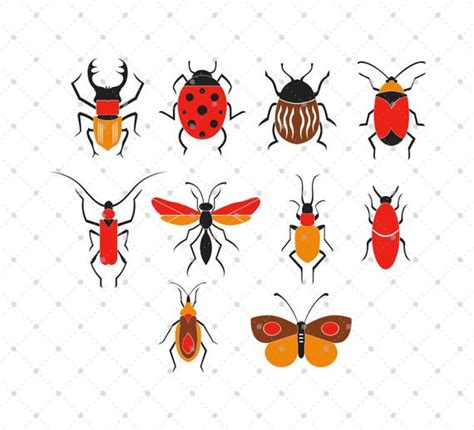 Bugs Svg Cut Files Insects Svg Cut Files For Cricut
