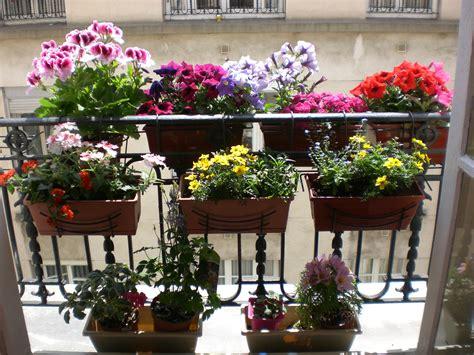 Mon Balcon Fleuri  Fleurs  Pinterest  Balcons, Fleuri