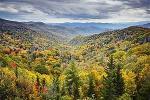 Top 5 Ways to Enjoy Fall at River Edge Motor Lodge