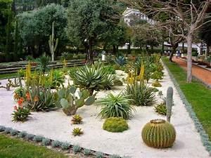 Plantes Pour Jardin Japonais Exterieur : plante grasse exterieur ide mini jardin avec plantes ~ Premium-room.com Idées de Décoration
