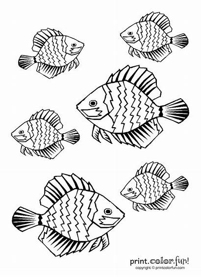 Fish Tropical Coloring Pages Printable Getcoloringpages Fun