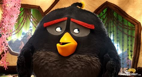 bomb matilda  red angry birds  images