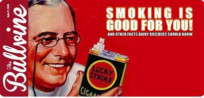 Smoking Why Roken Voor Van Een Insurance