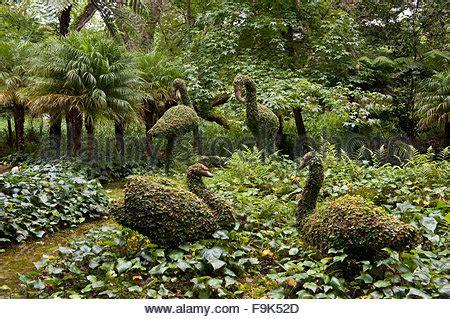 Botanischer Garten Ponta Delgada by Terra Nostra Botanischer Garten Im Tal Furnas Insel