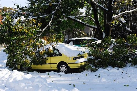 tips     fix winter storm damage   home