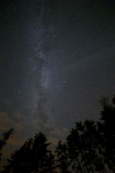 Free Images Forest Sky Night Star Milky Way