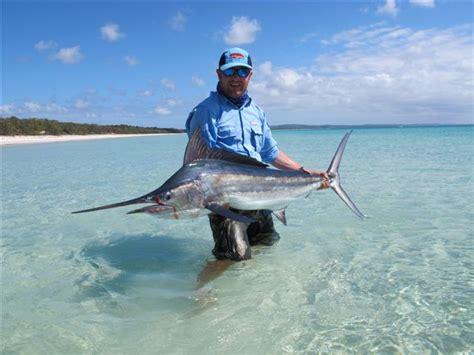 marlin flats fraser island billfish rare released hosres billfishreport