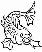 Catfish Coloring Pages Fish Sheet Magazine sketch template