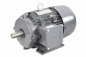 Lhp Std Induction Motor  Ip Rating  Ip21  Techno Crats