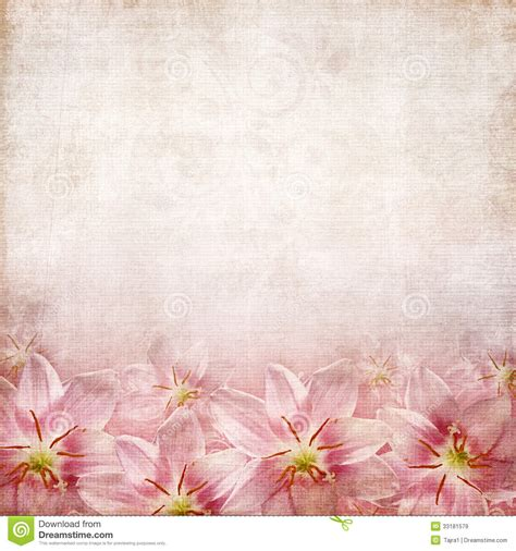 greeting  invitation card royalty  stock images