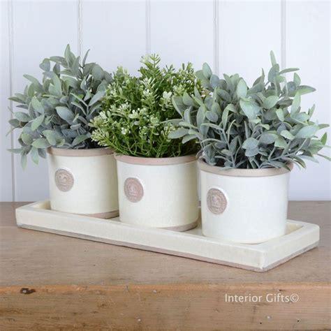Kew Garden Set Of Herb Pots & Tray Round In Ivory Cream