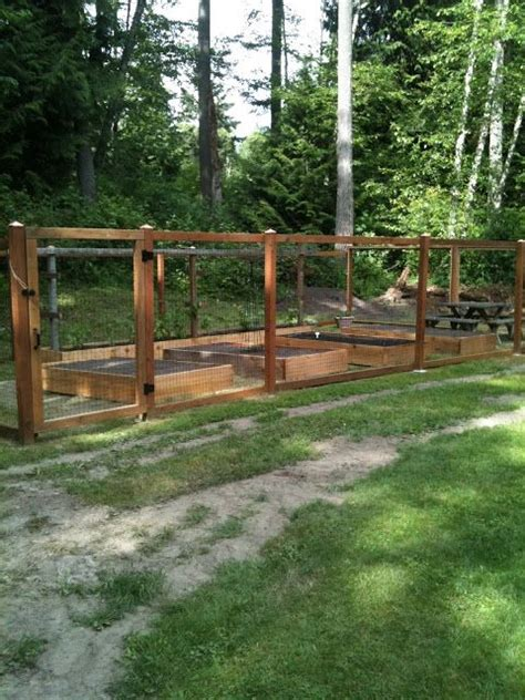 images  critter proof raised bed gardens