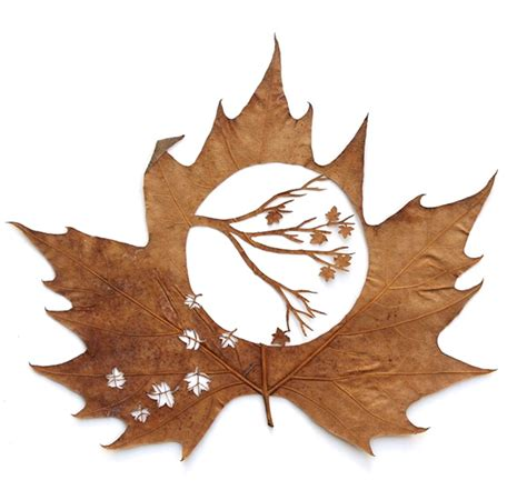 cutout leaf art  lorenzo duran silva plant propaganda