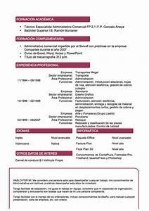 Curriculum Vitae Espa C3 B1ol Doc
