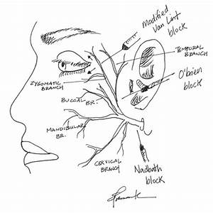 Ocular Trauma  Assessment And Management