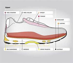 Anatomy Of A Running Shoe