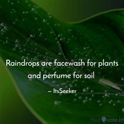 raindrops  facewash fo quotes writings