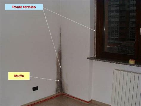 Muffe Sui Muri Interni - muffa sui muri come eliminarla