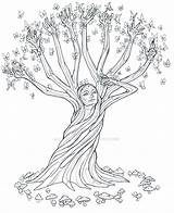 Tree Line Magic Drawing Coloring Archeopteryx Lyrica Drawings Pages Trees Fairy Gemerkt Von Deviantart Colorir sketch template