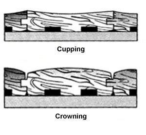 Cupping & Crowning Wood Floors   Wichita, KS   ServiceMaster