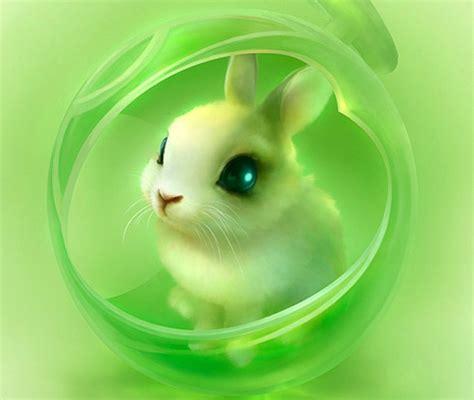 Green Animal Wallpaper - bunny backgrounds wallpapersafari