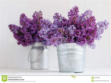 cuisine en vieux bois bouquet deux des fleurs lilas image stock image du fond romantique 40094893