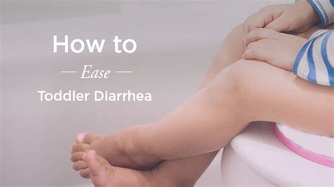 what to feed toddler with diarrhea the plan 423   648x364 The Meal Plan to Relieve Toddler Diarrhea