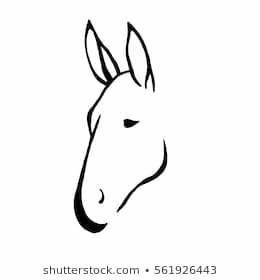 Donkey Profile Images, Stock Photos & Vectors | Shutterstock