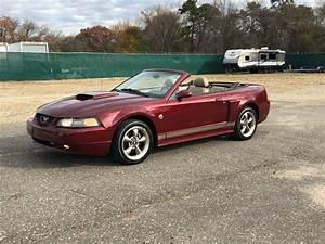 2004 Ford Mustang   Hollywood Motors