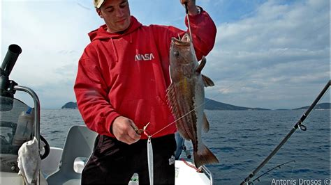 grouper jigging