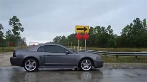 Photos   2003 Ford SVT Terminator Cobra [Mustang] Cobra For Sale