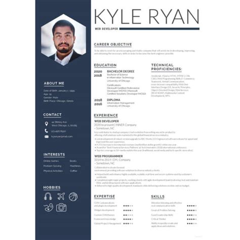 Web Developer Resume Exles by Web Developer Resume Template Exle Document And Resume