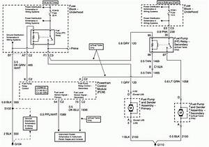 Wiring Diagram  35 2001 Chevy Blazer Fuel Pump Wiring Diagram