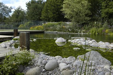 Swimming Pond : Tips To Build Your Diy Natural Swimming Pools