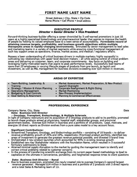 business unit director resume template premium resume