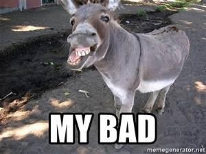 funny donkey memes - 28 images - 30 funny animal captions ...