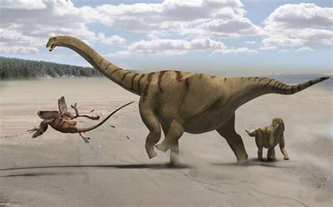 蜥脚类恐龙如何进化出最长的脖子_科技频道_凤凰网