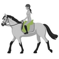 reitsportartikel  shop zubehoer fuer pferd und