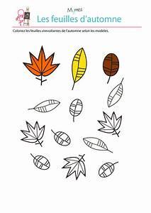 Feuilles D Automne à Imprimer : colorier les feuilles selon le mod le ~ Nature-et-papiers.com Idées de Décoration