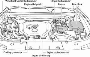 Mazda Engine Diagram