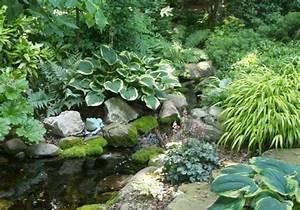 Warum Sind Pflanzen Grün : teich bepflanzen mehr als 70 ideen ~ Markanthonyermac.com Haus und Dekorationen