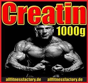 Kalorienbedarf Genau Berechnen Bodybuilding : creatin kur erstaunliche massezuw chse in 6 wochen ~ Themetempest.com Abrechnung