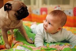 Image D Enfant : fonds d 39 cran enfant et animaux maximumwall ~ Dallasstarsshop.com Idées de Décoration