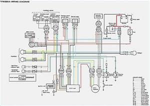Yamaha Grizzly 350 Wiring Diagram Dolgular