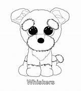 Beanie Boo Coloring Pages Ty Whiskers Boos Party Puppy Kleurplaten Sanaas Printable Colouring Jojo Siwa Baby Babies Sheets Dog Cute sketch template