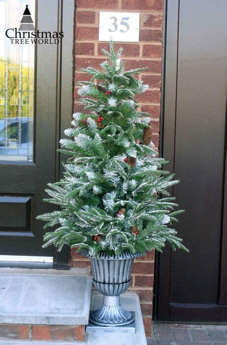 christmas tree world    festive news guides
